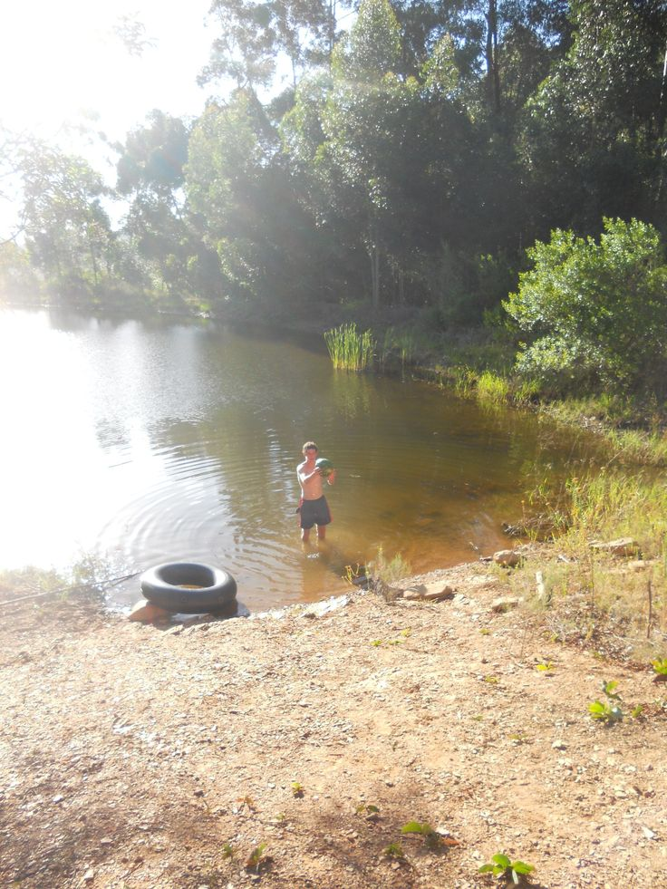 Fun and swim in the farm dam