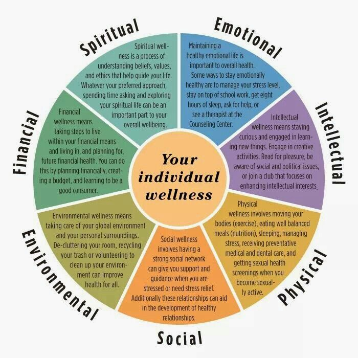 Self actualisation & finding contentment in life is by addressing & balancing the 7 pillars of life & mental wellbeing - The Wellness Wheel