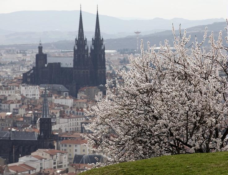 Mai : De nouvelles serres municipales pour Clermont-Ferrand !