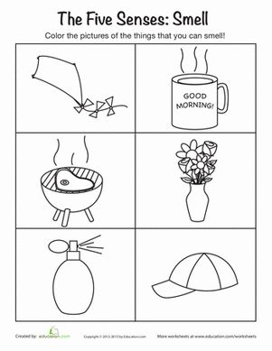 Preschool The 5 Senses Life Learning Worksheets: The Five Senses: Smelling