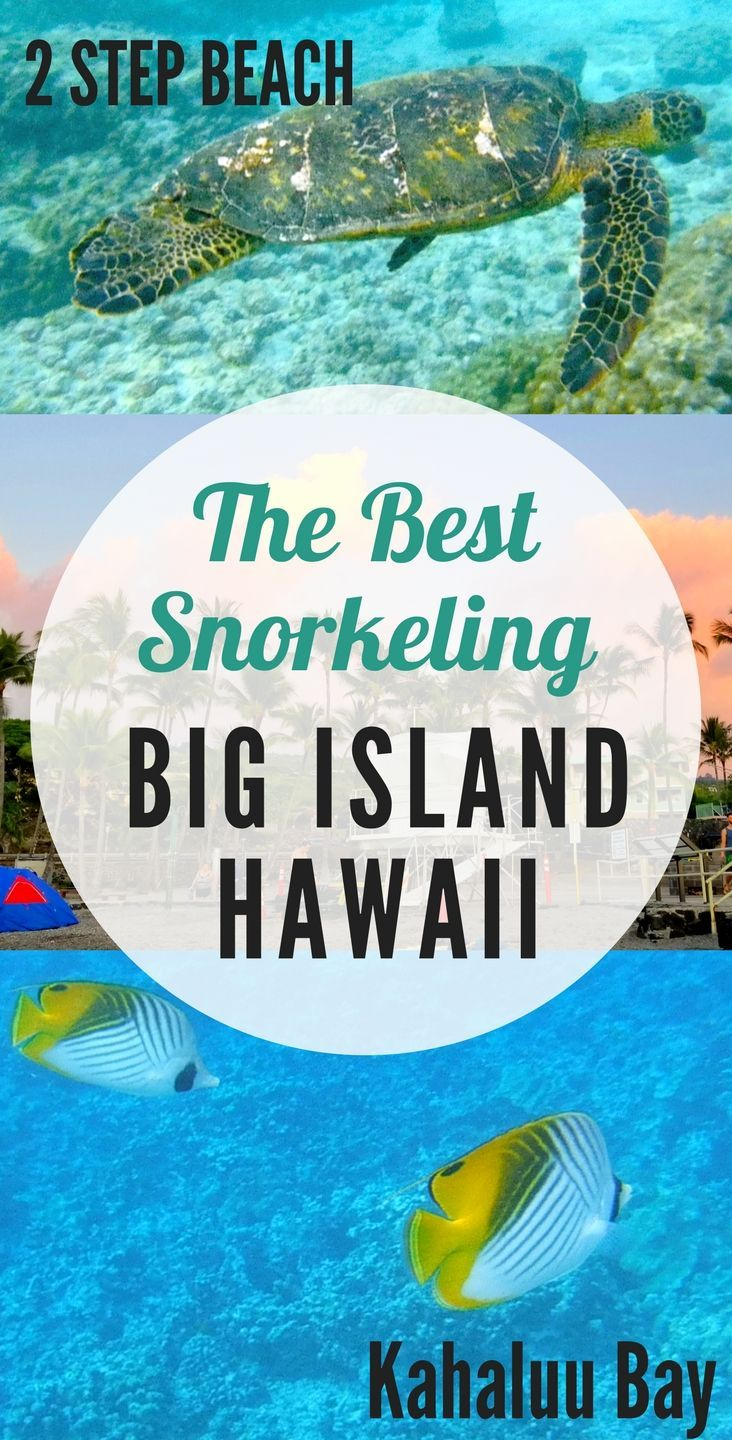 Hawaii Big Island Guide to Snorkeling. Learn about the top spots to snorkel on the Big Island where you are sure to see amazing underwater life and even turtles! - Hawaii Travel/ Hawaii Big Island Travel