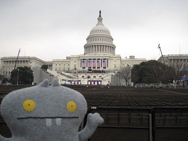 Traveling Babo gets ready for the many Plush Balls and cookie dinners plus the main event - the swearing in ceremony for President Elect Barack Obama tomorrow morning 1/20/2008.     http://soloha.vn/