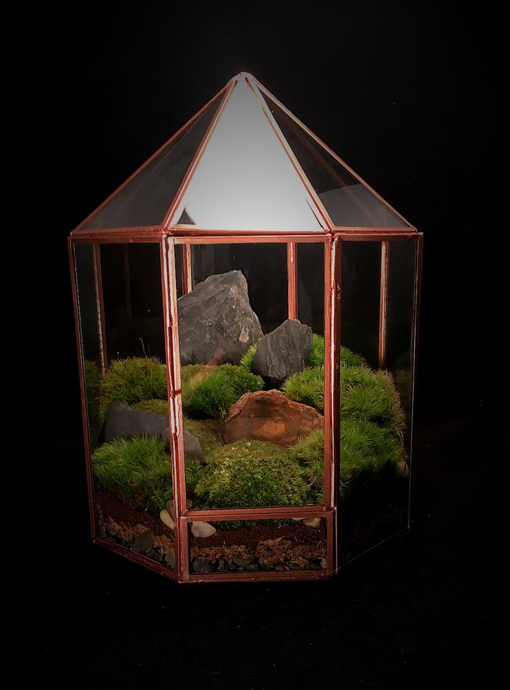 Excited to share the latest addition to my #etsy shop: Copper Geometric Terrarium // Warden Case Terrarium // Large Greenhouse Terrarium // Moss Terrarium // Terrarium Centerpiece