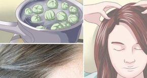 Les cheveux blancs sont un phénomène naturel chez les hommes et les femmes. Mais leur apparition n'est pas toujours bien vécue, surtout auprès des femmes, car ceci impacte leur estime de soi. Pour y remédier, elles usent et abusent de colorations qui certes règlent le problème momentanément, mais peuvent causer plusieurs problèmes de santé. Voici une astuce naturelle pour réduire les cheveux blancs.