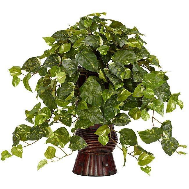 Nearly Natural Pothos w/Bamboo (Green) Vase Silk Plant (Polyester)