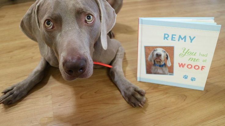 Personalized dog books from Put Me in the Story. Upload pictures of your dog to create a story to honor your new puppy or a dog who has died.