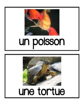 French Pets - Animals - Flashcards, Word wall words, BANG