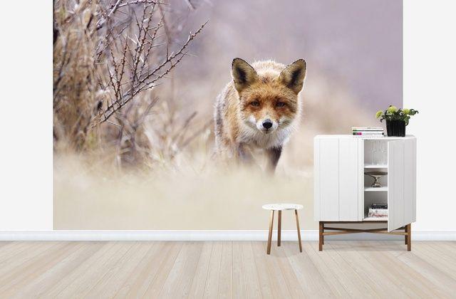 Ref Fox in Pastels - Wall Mural & Photo Wallpaper - Photowall