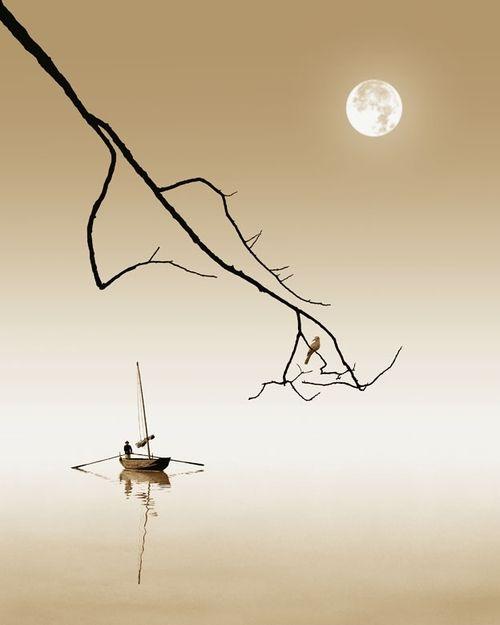 Gorgeous photograph, beautiful balance