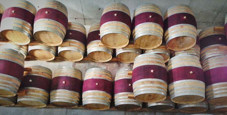 Wine Tourism by Mariette du Toit-Helmbold for Destinate