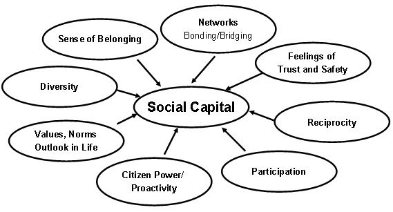 Social Capital: http://www.qualitative-research.net/index.php/fqs/article/viewFile/55/113/139