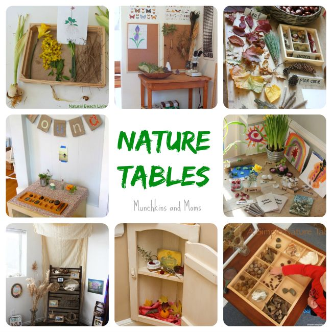 1000+ Ideas About Nature Table On Pinterest