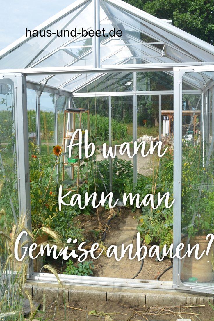 Ab Wann Kannst Du Gemuse Anbauen Gemuse Anbauen Gemusegarten Anlegen Gartenarbeit