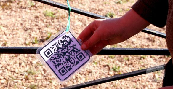 "How to create a QR Code Safari around a location -from Balmullo Primary School ("",)"