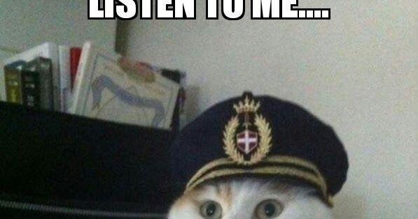 Fantastically Funny Memes At Memezie Funny Memes Memes Funny