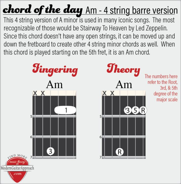 Barre chords for beginners music theory guitar basic