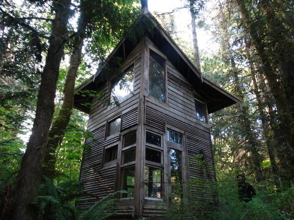 Photo 11 Of 21 In Jacob Witzling S Off Grid Cabins Are Straight Out Unusual Homes Off Grid Cabin Cabin
