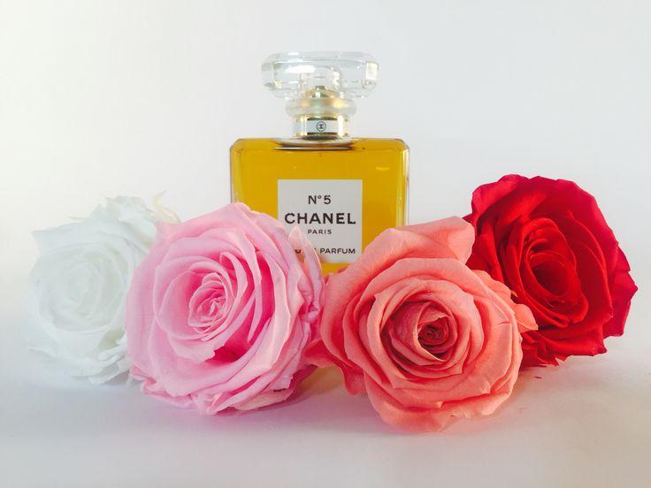 F R I D A Y   &   T H E    C I T Y  - Charlotte, Carrie, Miranda or Samantha? Whichever rose you are we have the preserved bloom to match! #friendship #nycnightlife #nycfriends #mrbig #charlotteyork #carriebradshaw #mirandahobbes #samanthajones #cocoluxur #cocodesfleurs #boxedroses #boxedpreservedroses #preservedroses coco des fleurs