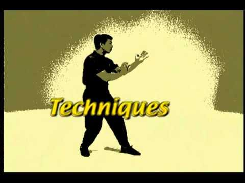 VTM Ip Man Instructional Series : Chum Kiu