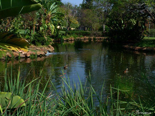 Jan Celliers Park, Groenkloof, Pretoria, South Africa