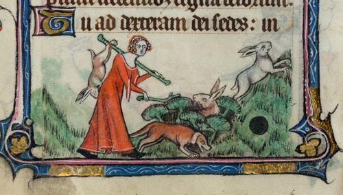 Yates Thompson 13 f. 69v Lady hunting  from the Taymouth Hours. Detail of a bas-de-page scene of a lady beating bushes for rabbits.  England, S. E.? (London?) 2nd quarter of the 14th century #14thcentury #bookofhours #england