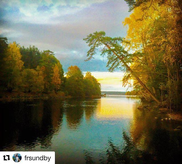 #Repost @frsundby with @get_repost  Høst ved Femsjøens bredder. #reiseliv – When In Norway
