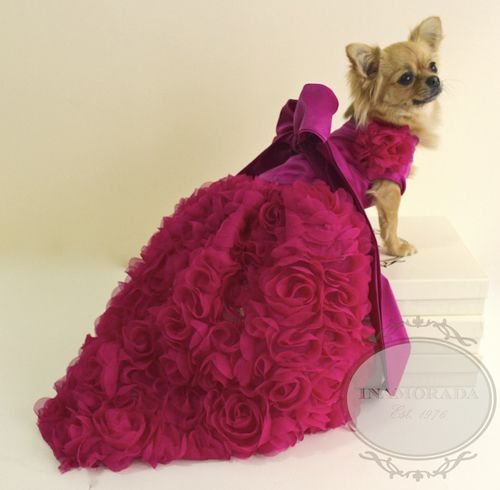 Best 25+ Designer dog clothes ideas on Pinterest   Pet ...