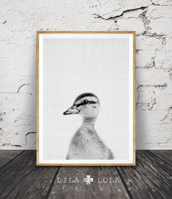 Lila & Lola Peekaboo Animals: Instant Download Digital Prints #kidsroom #nursery