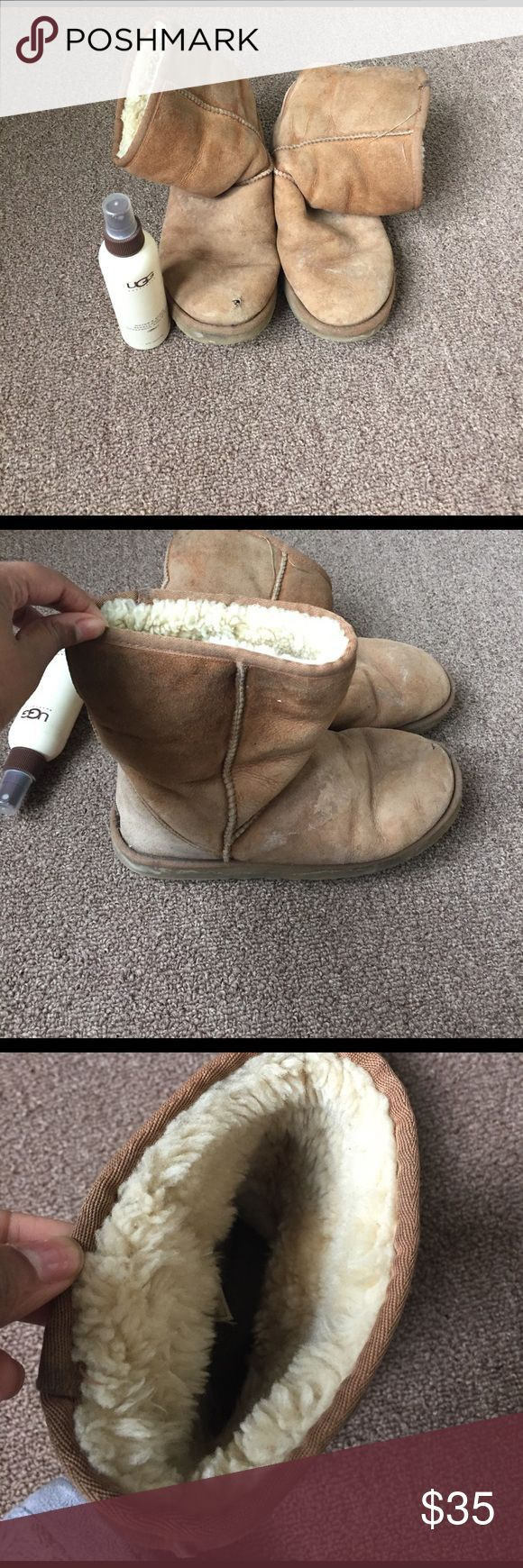 Classic Short Uggs Chestnut Uggs w/ Repellent. Worn. 50% - 60% of spray left. Size 8. UGG Shoes
