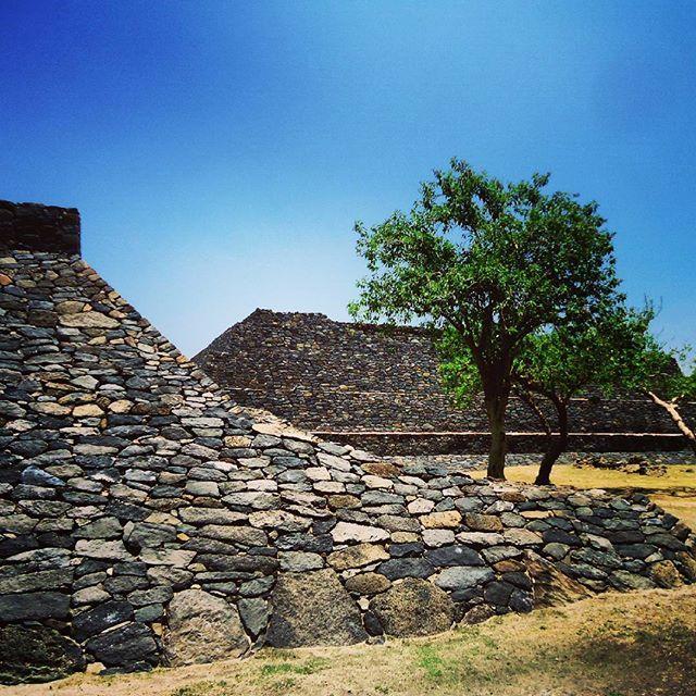 Ruins. #abasolo #guanajuato #mexico #liveittobelieveit #liveextraordinary #vivemexico #vivamexico #destination #wheretogo #bajio #traveling #travelingram #travel #traveler #travelagent #travelersnotebook #tobook #wishlist #ruins #archaeology #archaelogical
