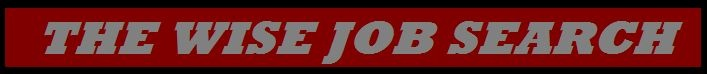 """TheWiseJobSearch: 10 """"Must Use"""" Websites For Your Job Search!!!"""