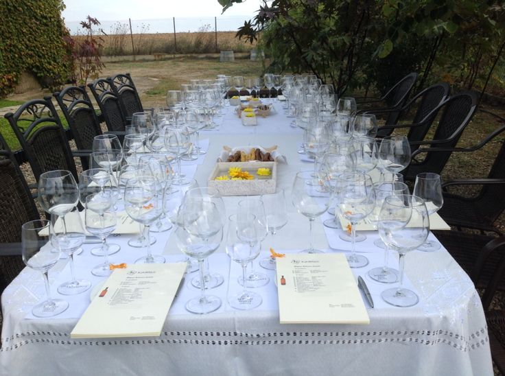 Private tasting at Domaine Kikones... Sounds like fun! Book now!