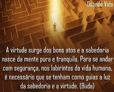 Vida e os árduos labirintos do percurso...