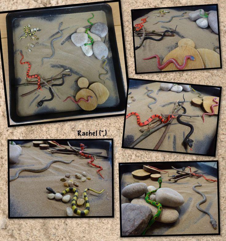 "Sandy snakes from Rachel ("",)"