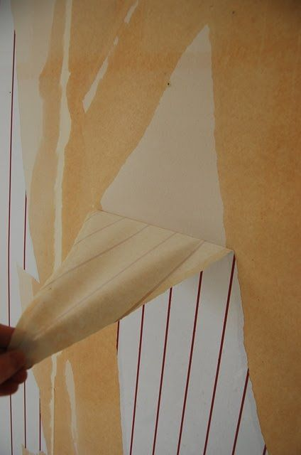 17 best images about wallpaper on pinterest for Home wallpaper removal tips
