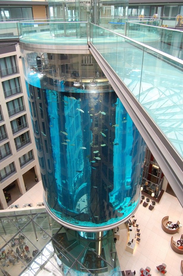 The AquaDom in Berlin, Germany, is a glass aquarium with a built-in transparent elevator