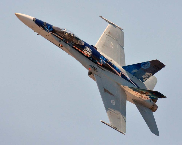 Borden Canadian Forces Day and Air Show