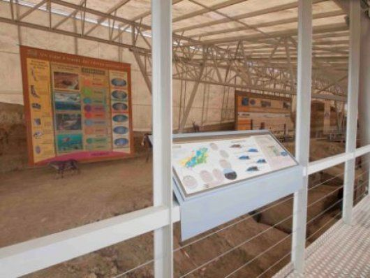 Yacimiento Pleistoceno de Fonelas (Granada)