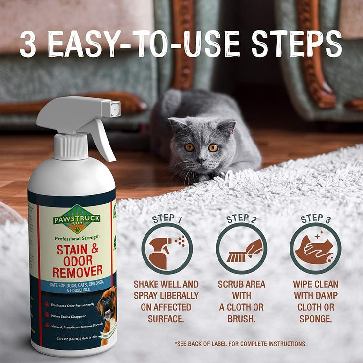 Pawstruck Stain and Odor Remover?! in 2020 Pet smell