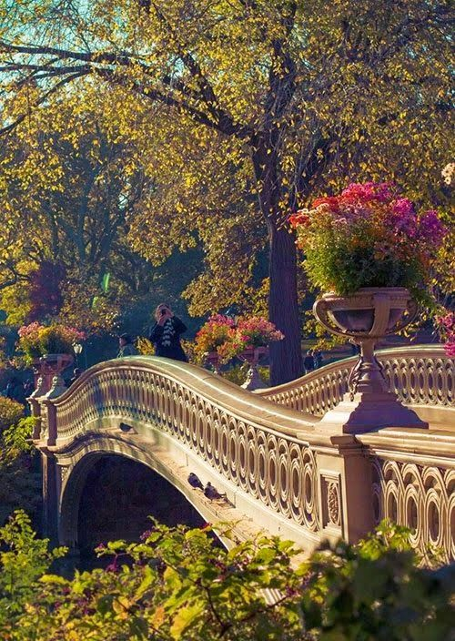 Bow Bridge in Central Park Manhattan, New York City sometimes you have to go here just to think about everything