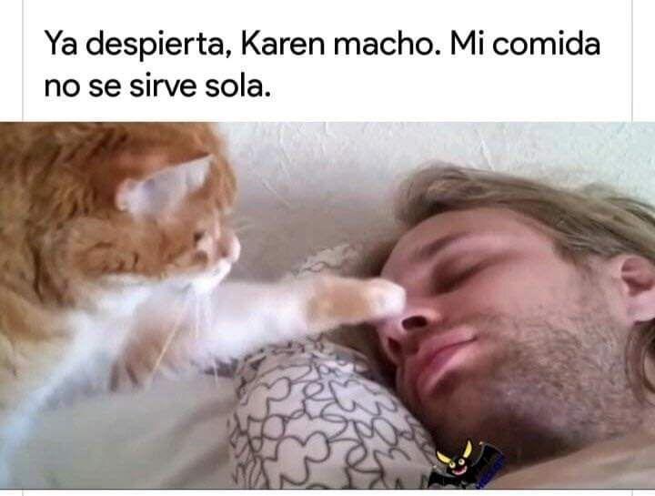 Karen Macho Y Raul Memes En Espanol La Mejor Recopilacion De Memes Lo Mas Viral De Internet Memes Divertidos Memes Memes Comicos