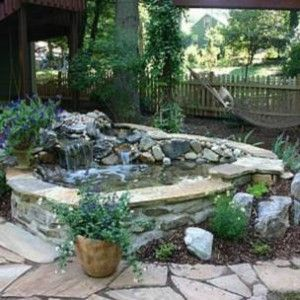i would love to have a small coy pond in my backyard