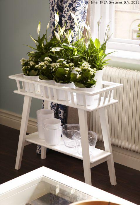 Prisjeti se ljeta u svojem domu s pomo u najdra ih biljaka - Ikea plantes vertes ...
