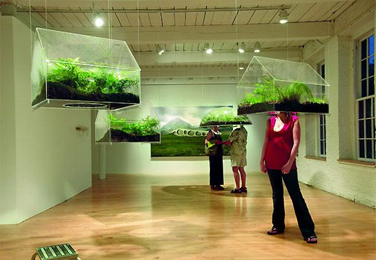 Stick your head in a box full of plants!    Read more: Environmental Art at Swarm Gallery, San Francisco | Inhabitat - Sustainable Design Innovation, Eco Architecture, Green Building