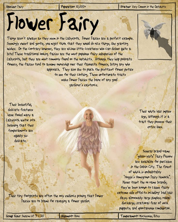 Labyrinth Guide - Flower Fairy  by =Chaotica-I  Fan Art / Digital Art / Painting & Airbrushing / Movies & TV©2011-2012 =Chaotica-I