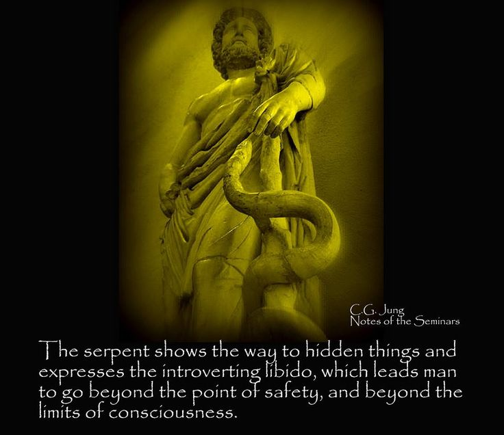 Carl Jung Depth Psychology: Carl Jung: The dragon is the mythological form of the snake.