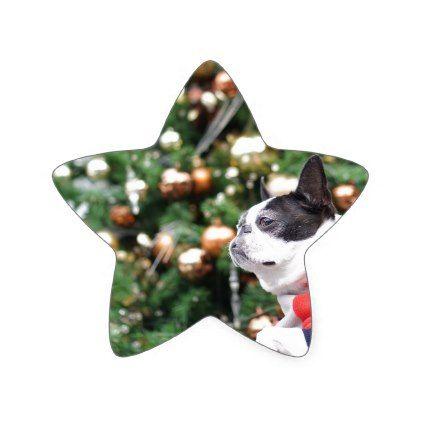 Boston Terrier Pug Dog Christmas Star Sticker - christmas craft supplies cyo merry xmas santa claus family holidays