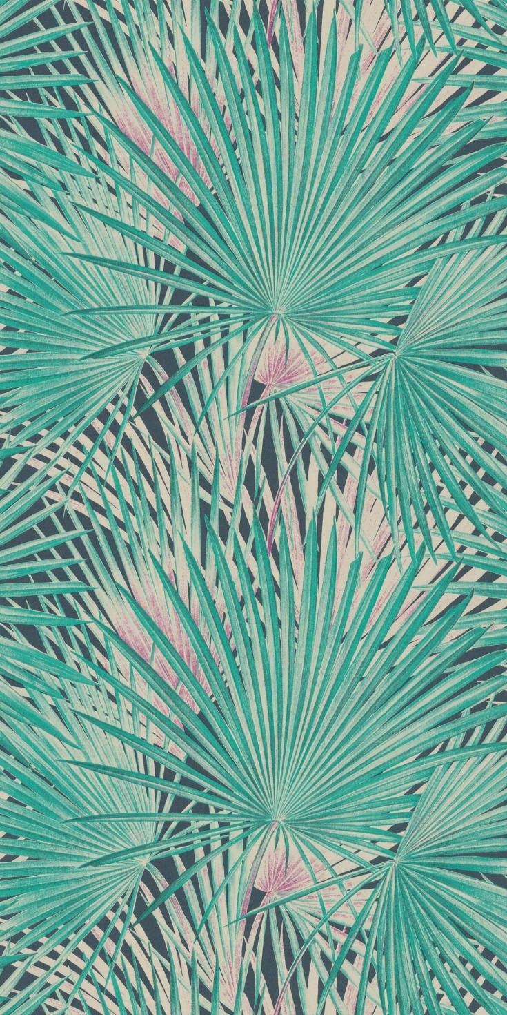 Palm Leaves By Albany Emerald 803327 In 2019 Albany Wallpapers