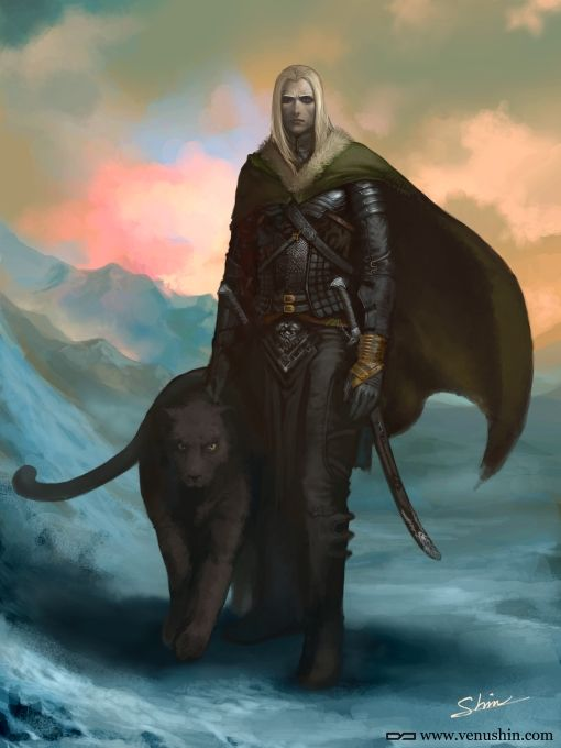 Rillin - high elf druid who's lived a sheltered life as a sage, but now he must go forth with his dog, Ominous, to find out the truth about his parents.