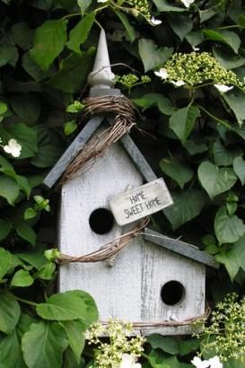 Wonderful birdhouse right in the middle of a climbing Hydrangea...charming!!!
